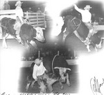 Warner's Rodeo Pictures Mid 60s - Mid 70s